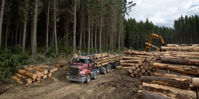 Hill Log Haulage